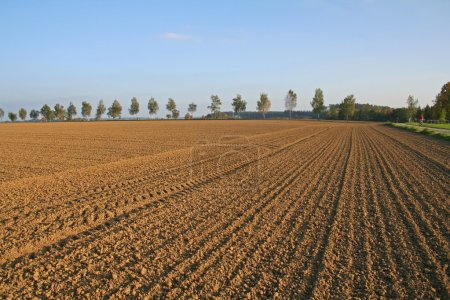 Photo for Ploughed field in autumn - Royalty Free Image