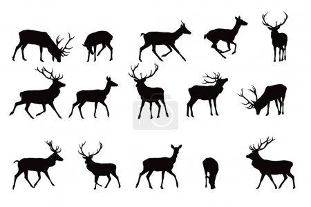 Illustration pour Silhouette de cerf, collection vectorielle, éléments pour designers - image libre de droit