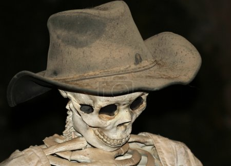 A Skeleton in a Cowboy Hat Against Black