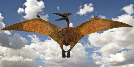 A Pterosaur Glides in a Sky with Clouds