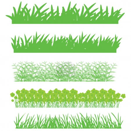 Illustration for Nature and plants, grass and shrubs - Royalty Free Image