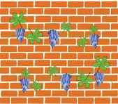 Brick wall grapes