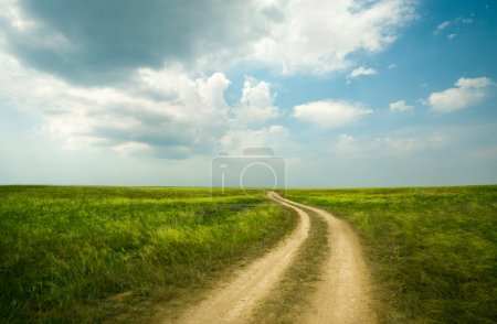 Field winding road through the green meadow