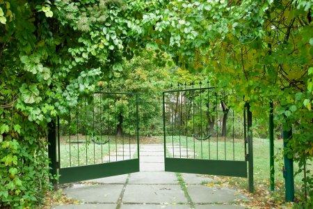 Photo pour Porte en fer dans un beau jardin verdoyant - image libre de droit