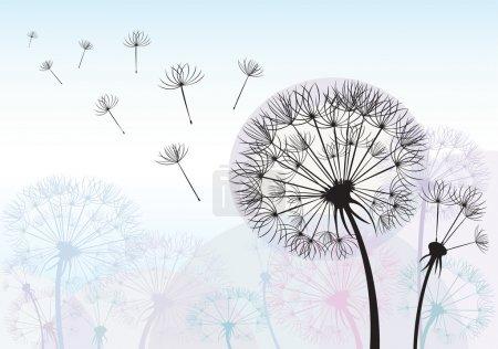 Illustration for Silhouette dandelion - Royalty Free Image