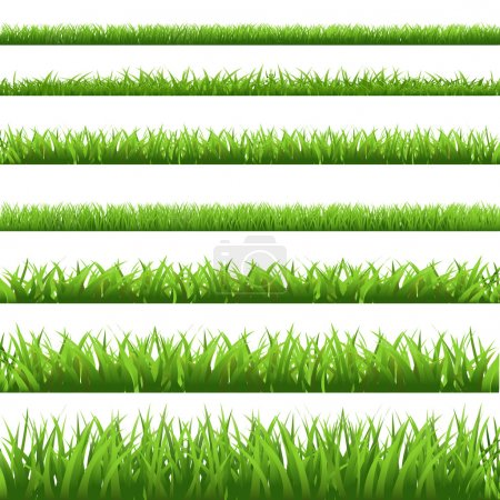 Illustration for Green Grass Set, Isolated On White Background, Vector Illustration - Royalty Free Image