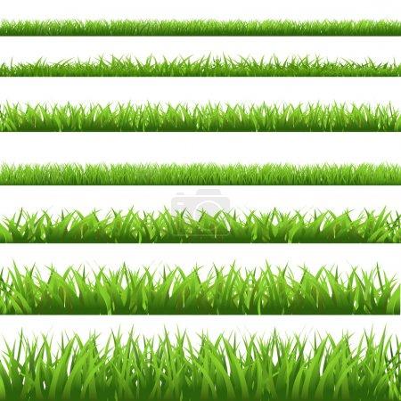 grünes Gras gesetzt