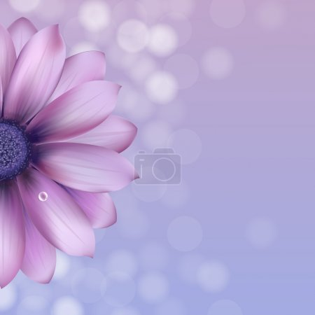 Illustration for Lilac Gerber With Water Drop, Vector Illustration - Royalty Free Image