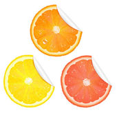 3 Citrus Stickers Isolated On White Background Vector Illustration