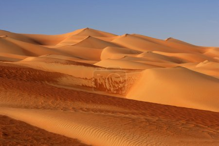Dunes in the Empty Quarter