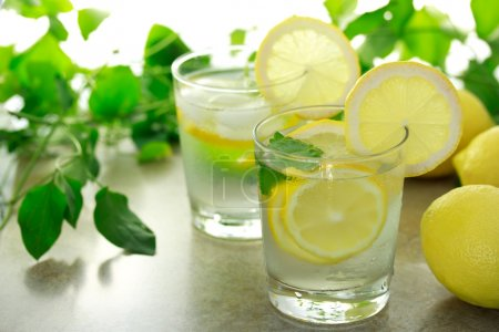 Photo for Lemon water with fresh lemons, and lemon balm with green plants - Royalty Free Image