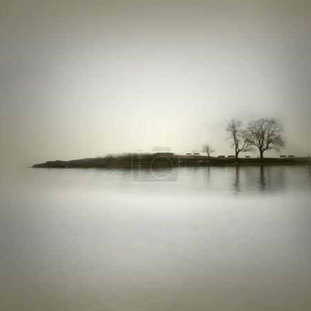 Photo pour Paysage dans des tons sépia avec des arbres isolés - image libre de droit