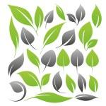 Set of leaf design elements...