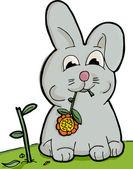 Cute Bunny Eating