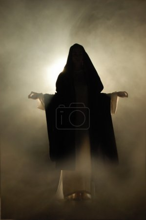 Virgin Mary appearance in a mystical atmosphere.