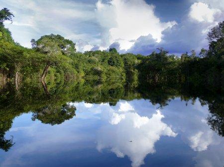 Photo pour Réflexions du fleuve Amazone, Brésil - image libre de droit