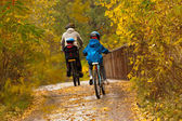 Active family cycling on bikes outdoors