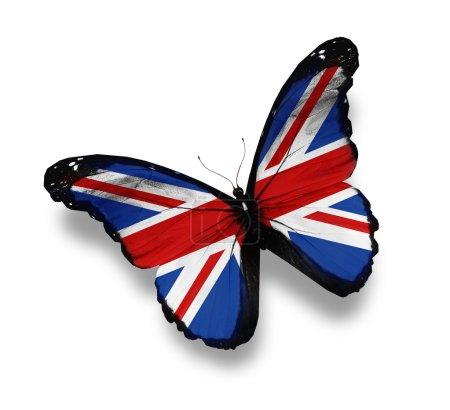 Photo pour Papillon drapeau anglais, isolé sur blanc - image libre de droit