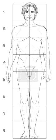 Man body III