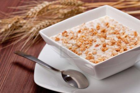 Photo pour Bol de céréales muesli, gros plan - image libre de droit