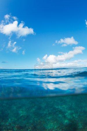 Tropical Ocean, Split View Half Over Half Underwater