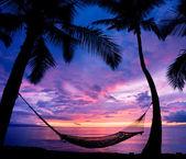 Krásná dovolená při západu slunce, houpací silueta s palmami