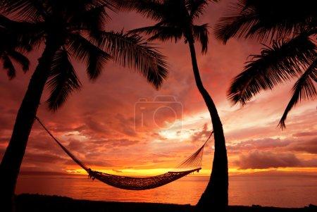 Photo pour Belle coucher de soleil de vacances, silhouette d'hamac avec des palmiers - image libre de droit