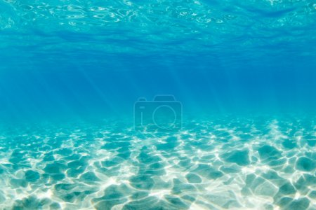 Photo for Underwater - Royalty Free Image