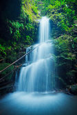 Beautiful Lush Waterfall in Hawaii