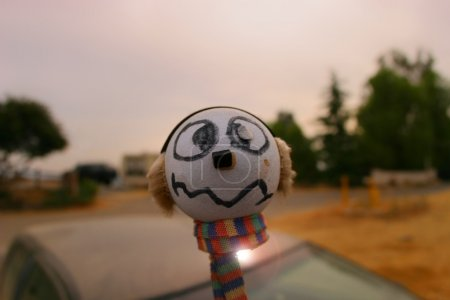 Antenna ball
