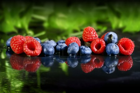 Photo for Abstract still life composition of blueberries and raspberries with blurred green foliage background and wet reflective black foreground - Royalty Free Image