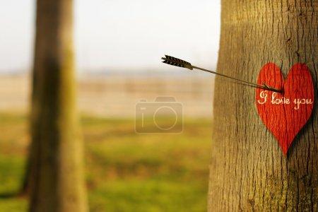 """Photo pour Résumé photo de concept d'une flèche peircing un coeur rouge sur l'arbre avec la phrase """"je t'aime"""" - image libre de droit"""