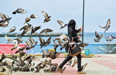 Revenge of the birds.