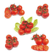 čerstvá červená rajčata