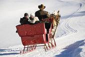 Pferdeschlittenfahrt im winter