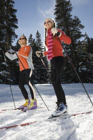 Cross Country Snow Skiiers