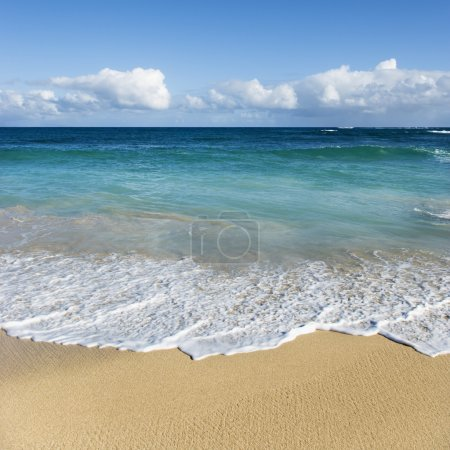 Maui, Hawaii beach.