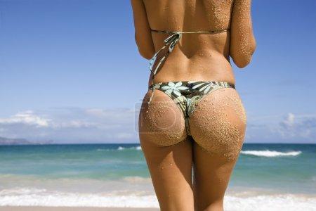 Photo for Back view of woman in thong bikini on Maui, Hawaii beach. - Royalty Free Image