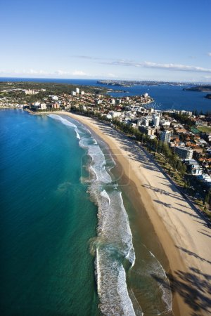 Photo for Aerial view of beachfront buildings and ocean in Sydney, Australia. - Royalty Free Image