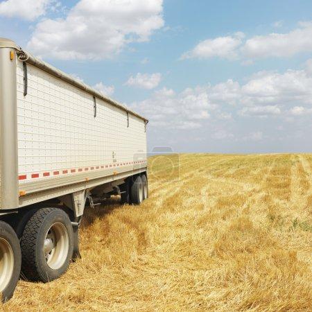 Photo pour Camion remorque tracteur dans le champ récolté . - image libre de droit