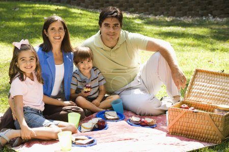 Family picnicking.
