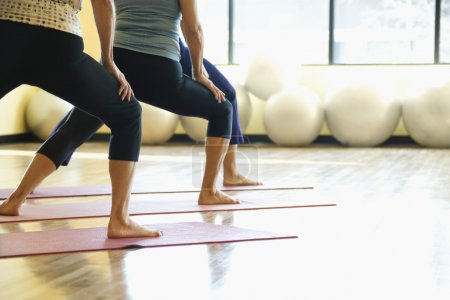 Photo for Caucasian prime adult females in yoga class. - Royalty Free Image