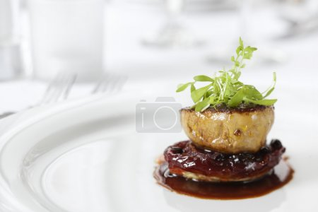 Photo for Dinner entree in a gourmet restaurant with sprouts and brown sauce. Horizontal shot. - Royalty Free Image