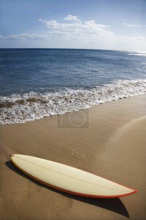 Surfboard on Maui beach.