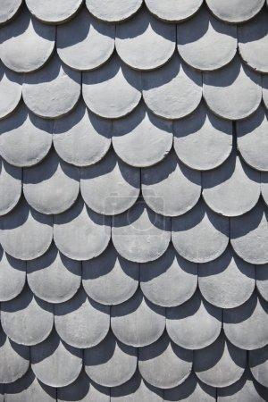 Scale shaped shingles.