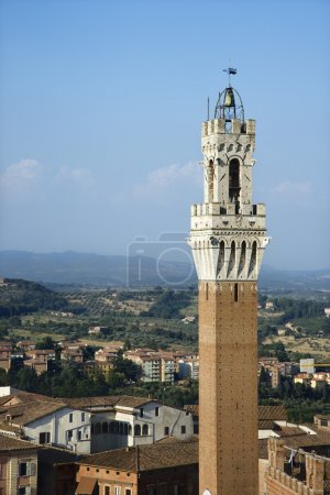 Bell Tower and Buildings in Siena