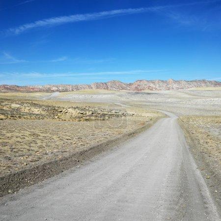 Dirt road, Cottonwood Canyon.