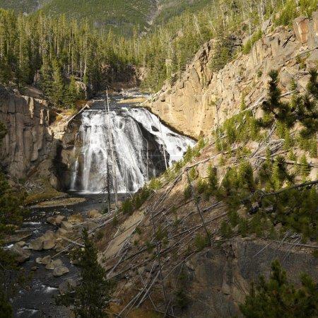 Photo pour Cascade dans le parc national d'yellowstone, wyoming. - image libre de droit