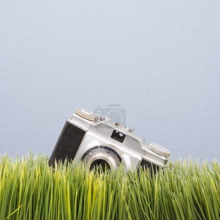 Vintage camera in grass.