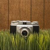 Vintage camera on grass